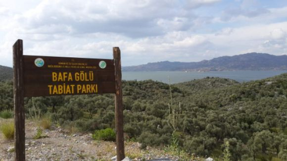 Bafra Gölü yanına RES izni verdi