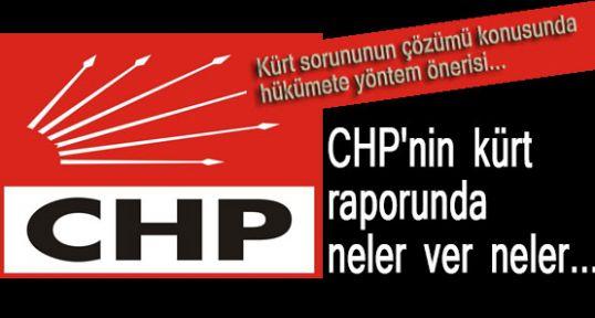 Buda CHP'nin Kürt Raporu