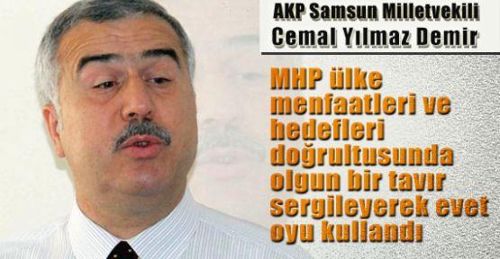 Demir, MHP Ülke Menfaatleri Doğrultusunda Evet Dedi