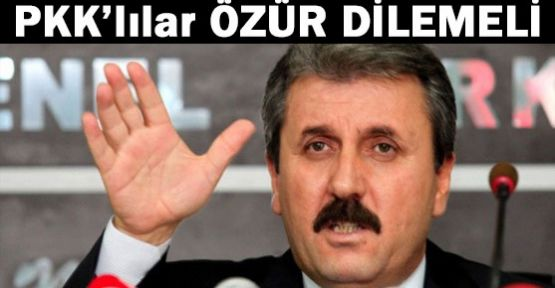 Destici: PKK'lılar Özür Dilemeli