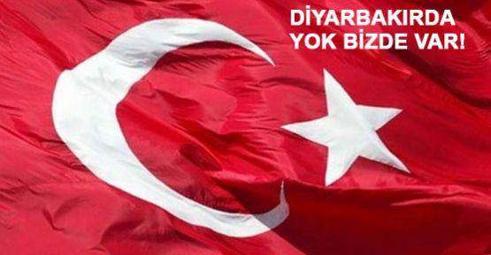 Diyarbakır'da Türk Bayrağı mı Arıyor sunuz?