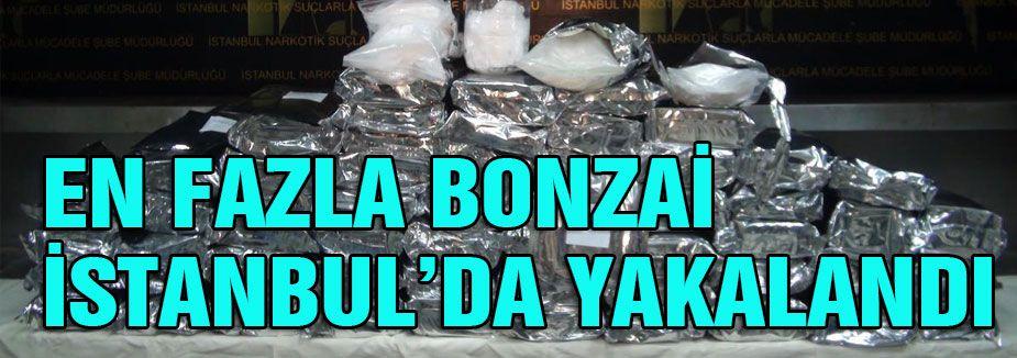 En fazla Bonzai İstanbul'da ele geçirildi