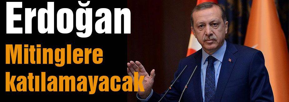 Erdoğan Mitinglere katılamayacak