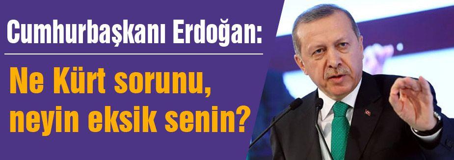 Erdoğan; Ne Kürt sorunu, neyin eksik senin?