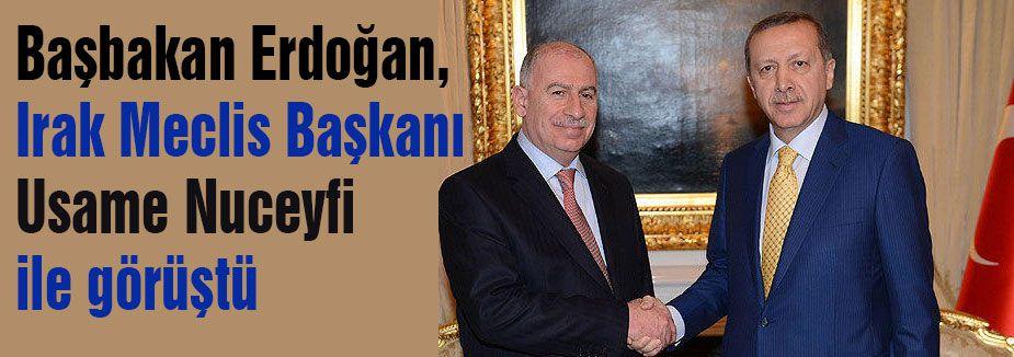 Erdoğan Nuceyfi ile görüştü