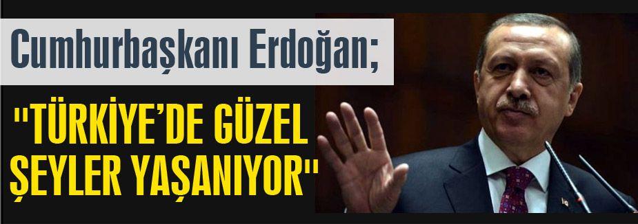 Erdoğan'dan Operasyon yorumu...