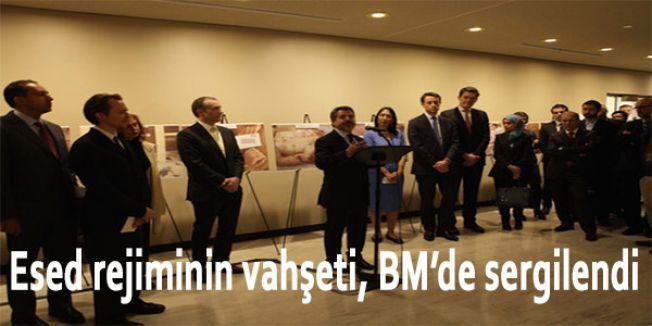 Esed rejiminin vahşeti, BM'de sergilendi