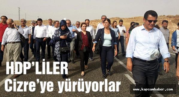 HDP'liler Cizre'ye neden yürüyor?