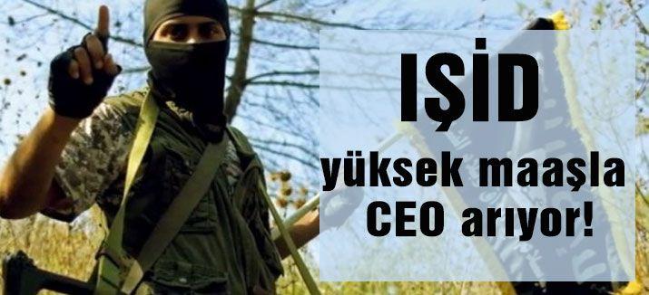 IŞİD, CEO arıyor!