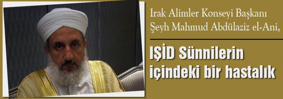 IŞİD Sünnilerin içindeki bir hastalık