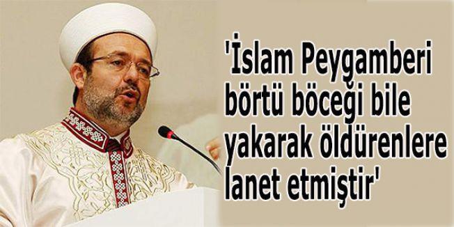 'İslam Peygamberi börtü böceği bile yakarak öldürenlere lanet etmiştir'