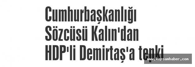 Kalın'dan HDP'li Demirtaş'a tepki