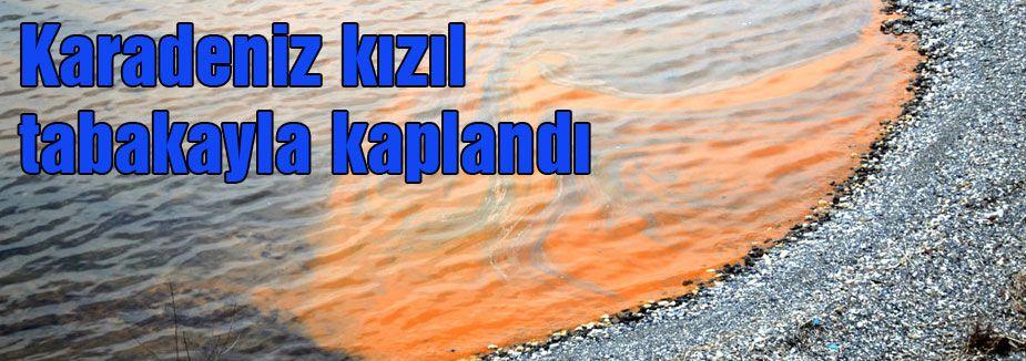 Karadeniz kızıl tabakayla kaplandı
