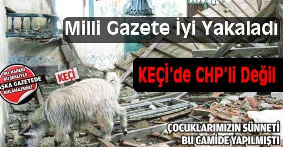 Keçilerde CHP'li Değil