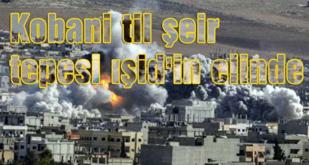 Kobani til şeir tepesi ışid'in elinde