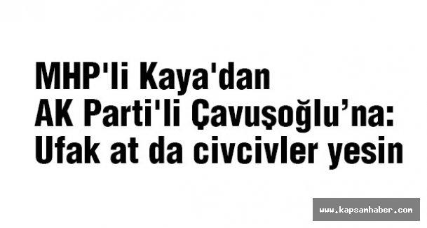 MHP'li Kaya, 'Ufak at civcivler yesin'