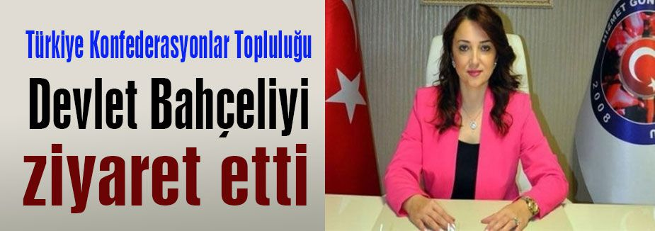 MHP: 'Türk siyasetinin teminatıdır
