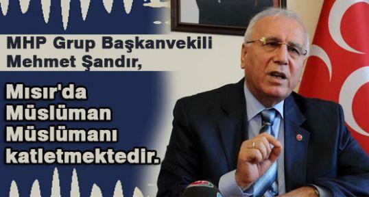 MHP'li Şandır;