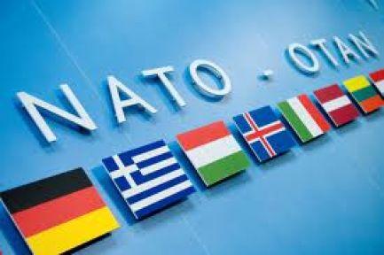 Nato'nun 5.Maddesi ne Diyor?