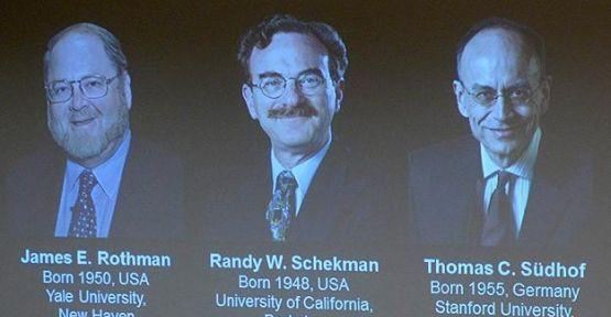 Nobel Tıp Ödülü hücre araştırmalarına