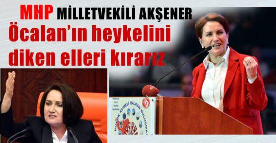 Öcalan'ın Heykelini Diken Elleri Kırarız!