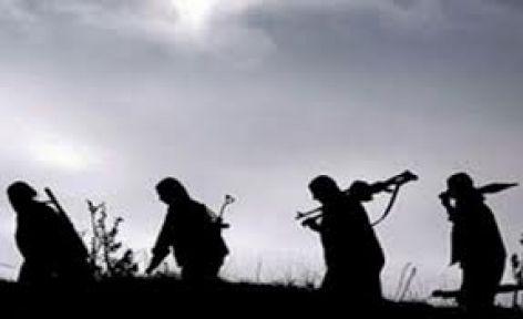 'PKK bir çılgınlık ve cinnet yaşıyor'