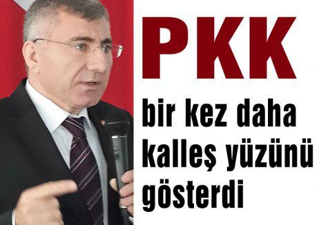 PKK bir kez daha kalleş yüzünü gösterdi
