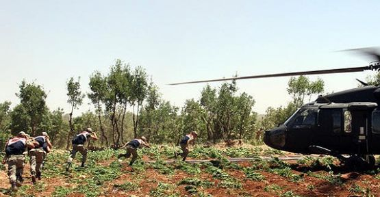 PKK Mali Kaynağına Darbe Yağıyor...