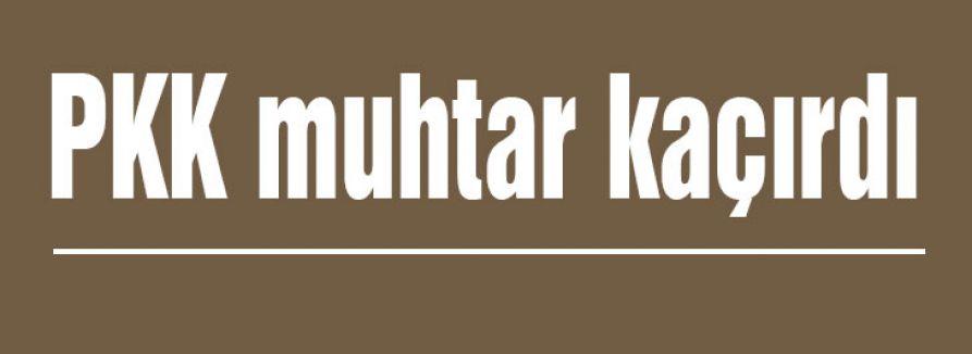 PKK muhtar kaçırdı
