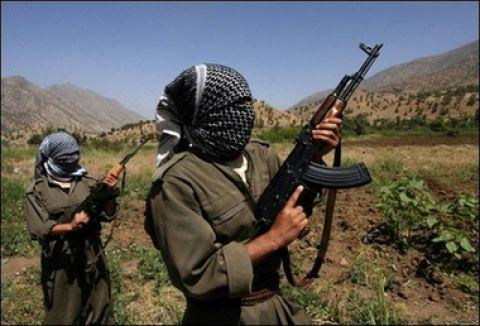 PKK muhtar kaçırdı...