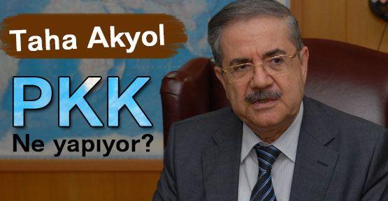 PKK ne yapıyor?