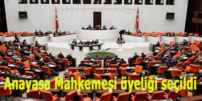 Rıdvan Güleç, Anayasa Mahkemesi üyeliğine seçildi
