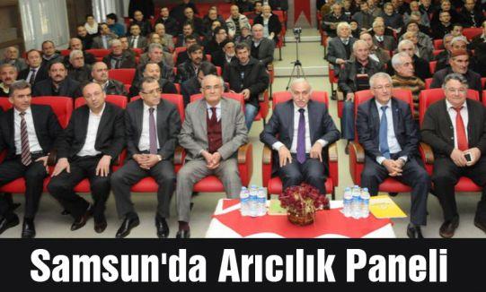 Samsun'da Arıcılık Paneli