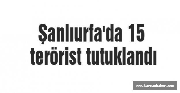 Şanlıurfa'da 15 terörist tutuklandı
