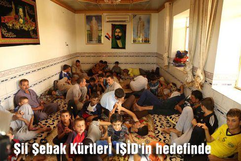 Şii Şebak Kürtleri IŞİD'in hedefinde