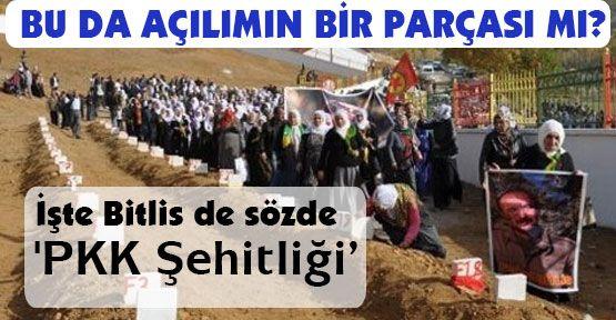 Şimdi de Bitlis de 'PKK Şehitliği'