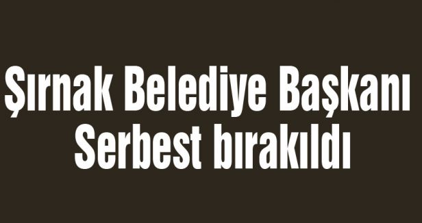 Şırnak Belediye Başkanı Serbest bırakıldı