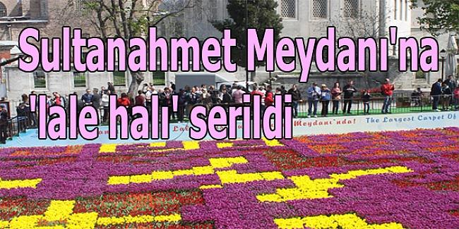 Sultanahmet Meydanı'na 'lale halı'