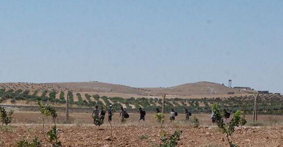 Suriye sınırında müdahale...