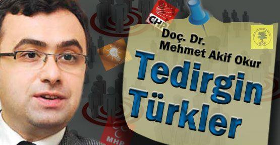 Tedirgin Türkler
