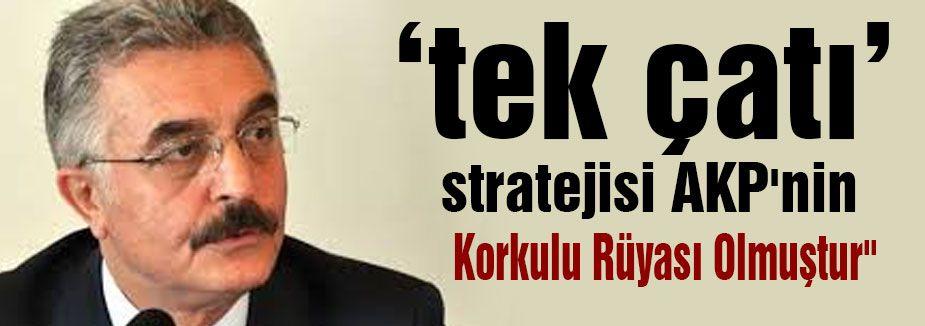 """""""Tek çatı"""" stratejisi AKP'nin Korkulu Rüyası Olmuştur"""""""