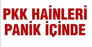 PKK Panik İçinde