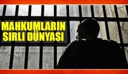 Cezaevlerinde Mahkumların sırlı Dünyası