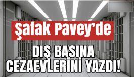 CHP'li Şafak Pavey'de Cezaevi Şartlarını Yazdı