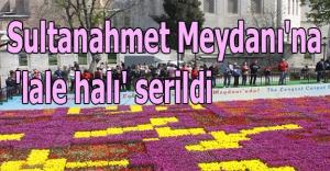 Sultanahmet Meydanı#039;na #039;lale halı#039;