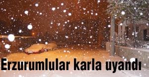 Erzurum şehir merkezine mevsimin ilk karı düştü.