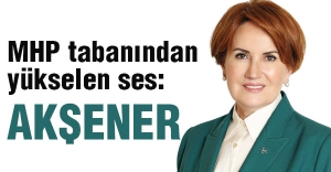 'Ülkücü irade'nin Meral Akşener sevdası