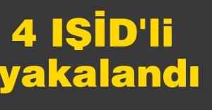 4 IŞİD'li yakalandı