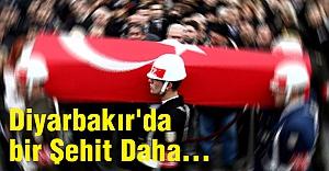 Diyarbakır'da bir Şehit Daha...