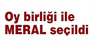 MHP'de Oy Birliği ile MERAL Seçildi